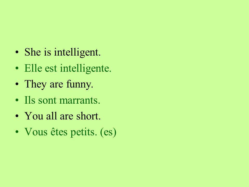 She is intelligent. Elle est intelligente. They are funny.