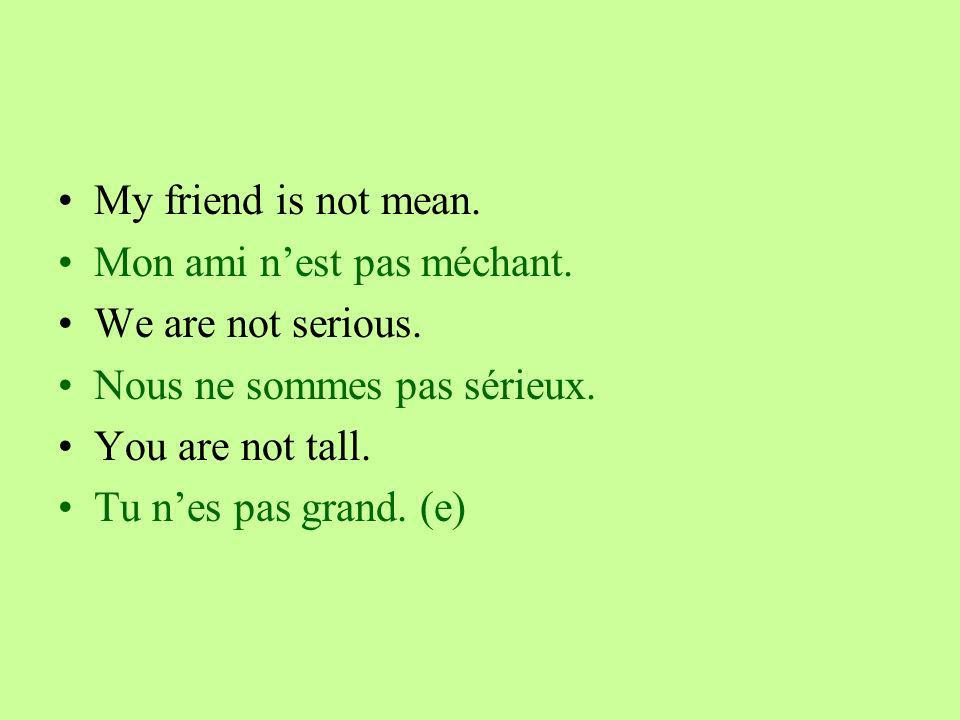 My friend is not mean. Mon ami nest pas méchant. We are not serious.