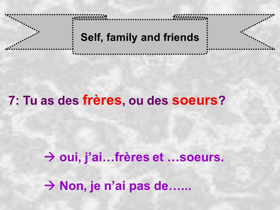 Self, family and friends 7: Tu as des frères, ou des soeurs .
