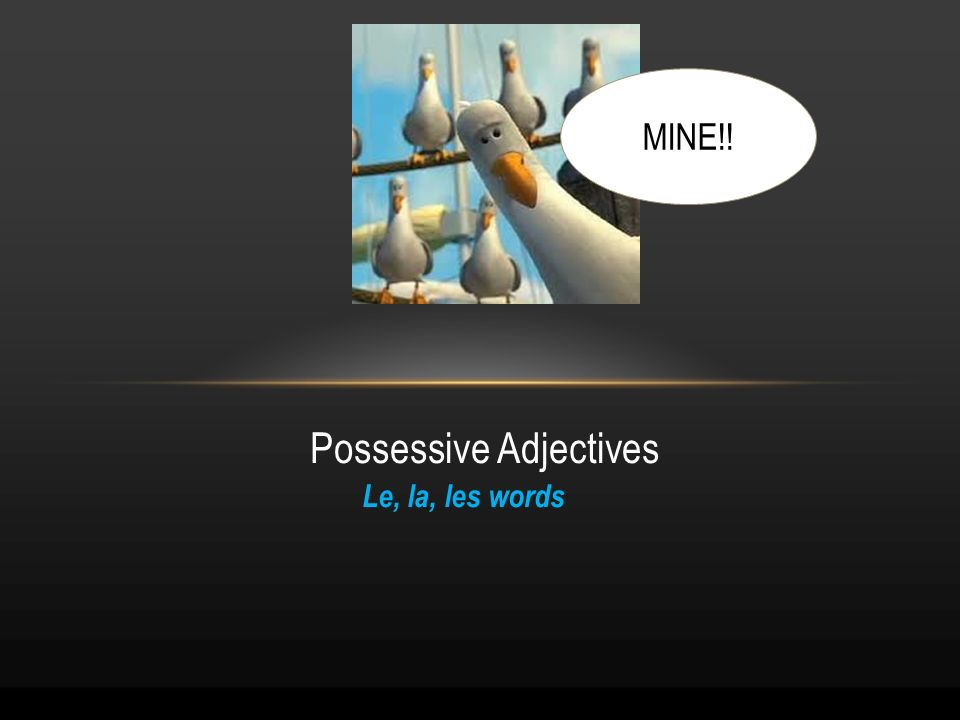 Le, la, les words Possessive Adjectives MINE!!