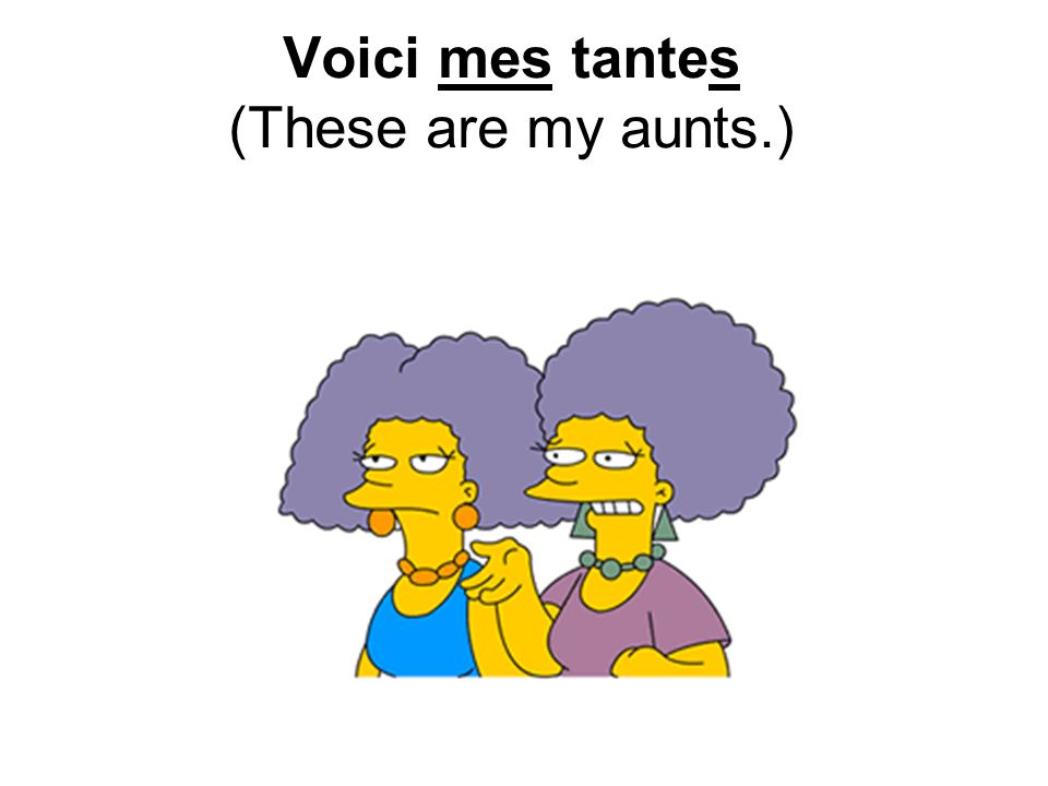 Voici mes tantes (These are my aunts.)