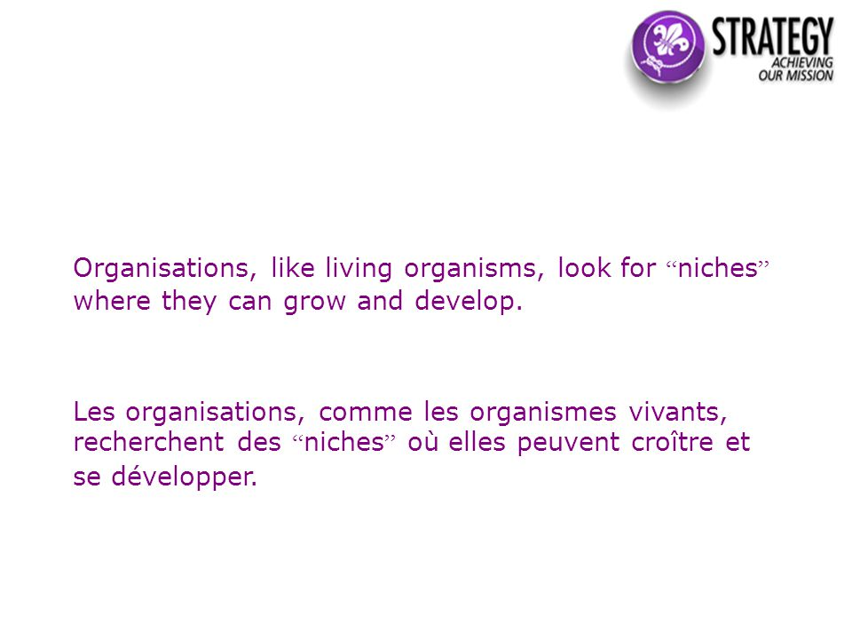 Organisations, like living organisms, look for niches where they can grow and develop.
