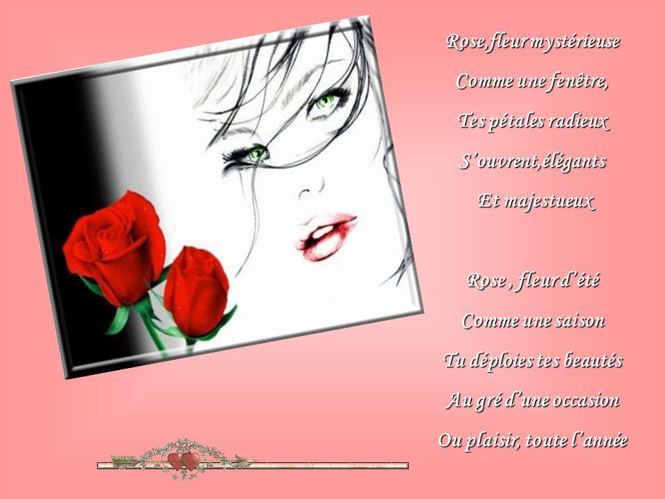rose,fleur mystérieuse comme une fenêtre, tes pétales radieux s