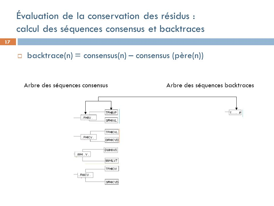 17 Évaluation de la conservation des résidus : calcul des séquences consensus et backtraces backtrace(n) = consensus(n) – consensus (père(n)) Arbre des séquences backtraces Arbre des séquences consensus