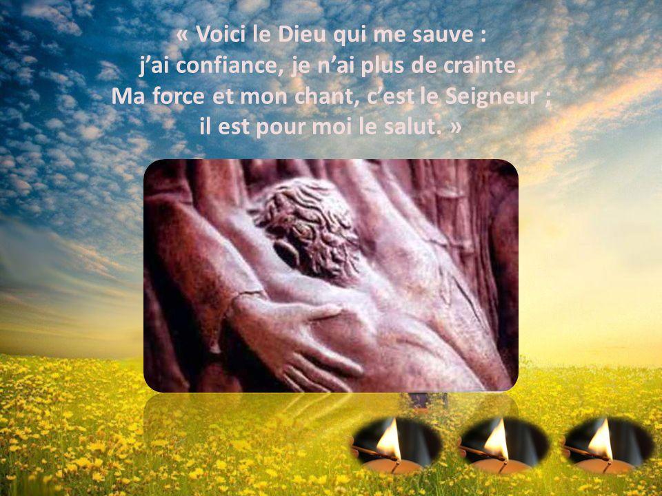 Joyeux de ta Miséricorde ! 3e Dimanche de l'Avent. - ppt télécharger