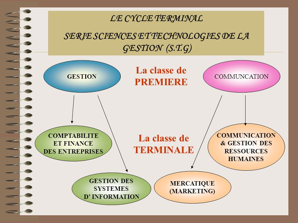 LE CYCLE TERMINAL SERIE SCIENCES ET TECHNOLOGIES DE LA GESTION (S.T.G) GESTIONCOMMUNCATION La classe de PREMIERE COMPTABILITE ET FINANCE DES ENTREPRISES COMMUNICATION & GESTION DES RESSOURCES HUMAINES GESTION DES SYSTEMES D INFORMATION MERCATIQUE (MARKETING) La classe de TERMINALE