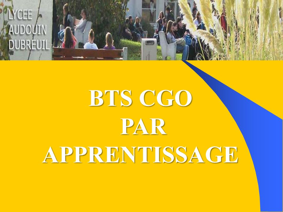 BTS CGO PAR APPRENTISSAGE PAR APPRENTISSAGE