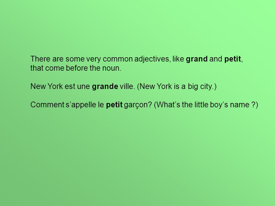There are some very common adjectives, like grand and petit, that come before the noun.