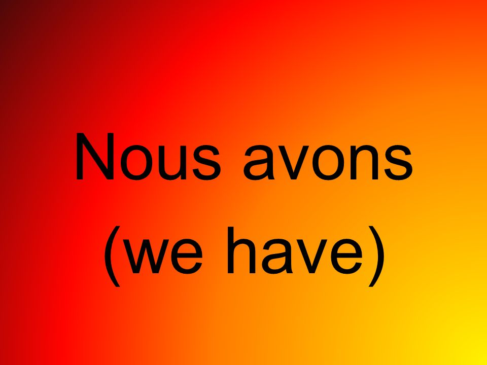 Nous avons (we have)