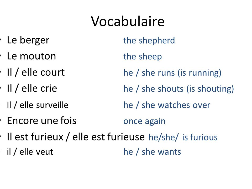 Le berger the shepherd Le mouton the sheep Il / elle court he / she runs (is running) Il / elle crie he / she shouts (is shouting) Il / elle surveillehe / she watches over Encore une fois once again Il est furieux / elle est furieuse he/she/ is furious il / elle veuthe / she wants Vocabulaire