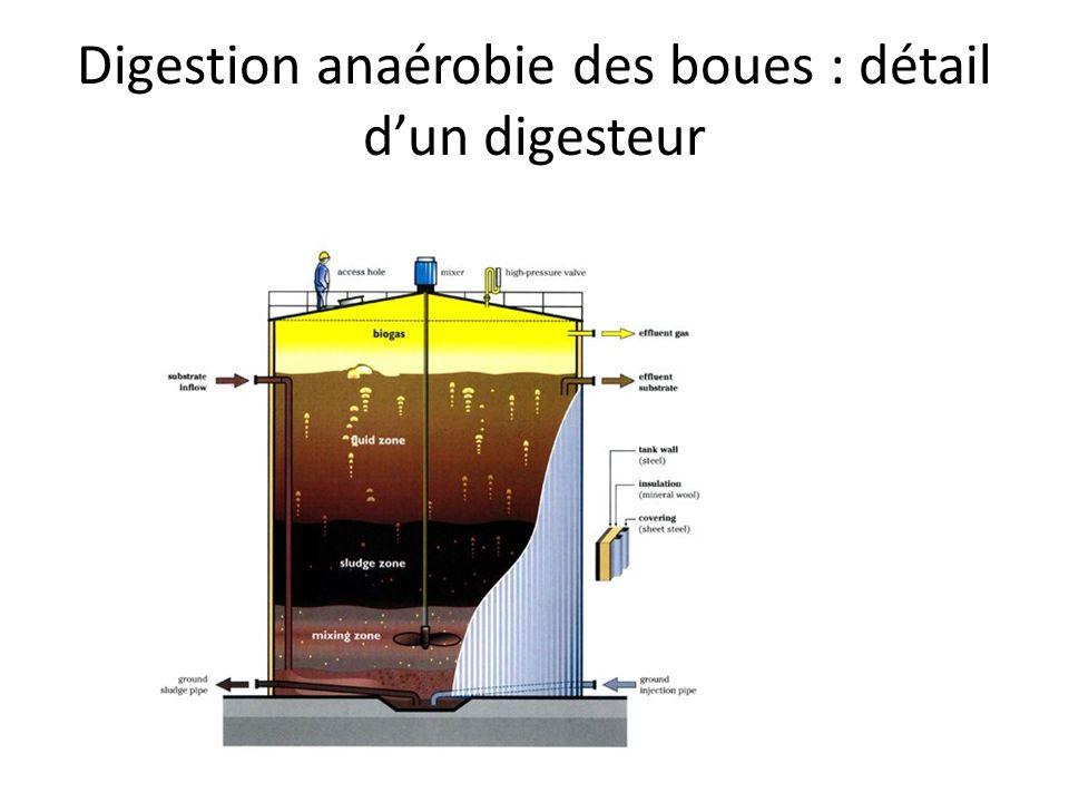 digestion anaerobie des boues