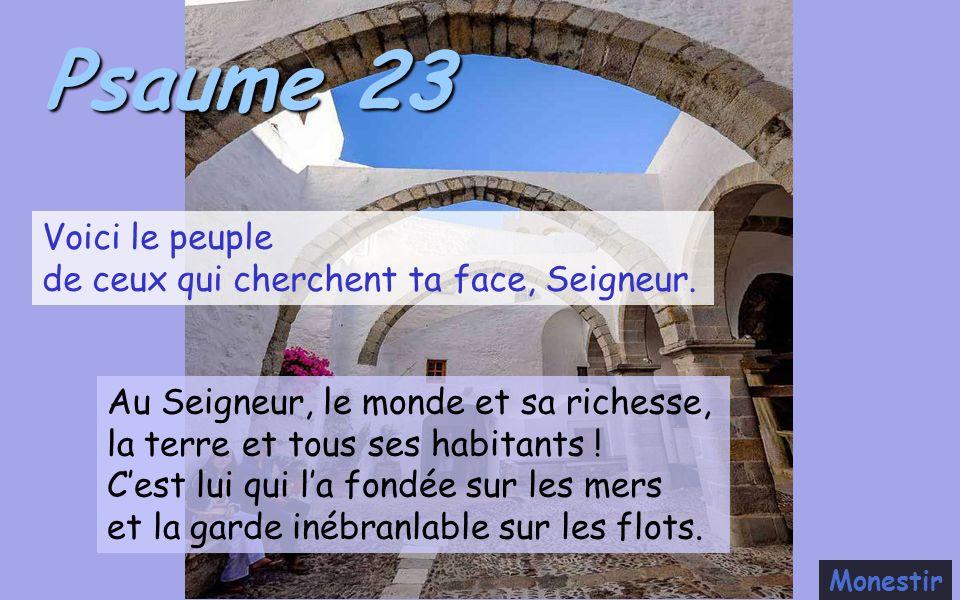 23.11.2020 – EVANGILE DU JOUR – Centre Romand de l'Apostolat Mondial de  Fatima