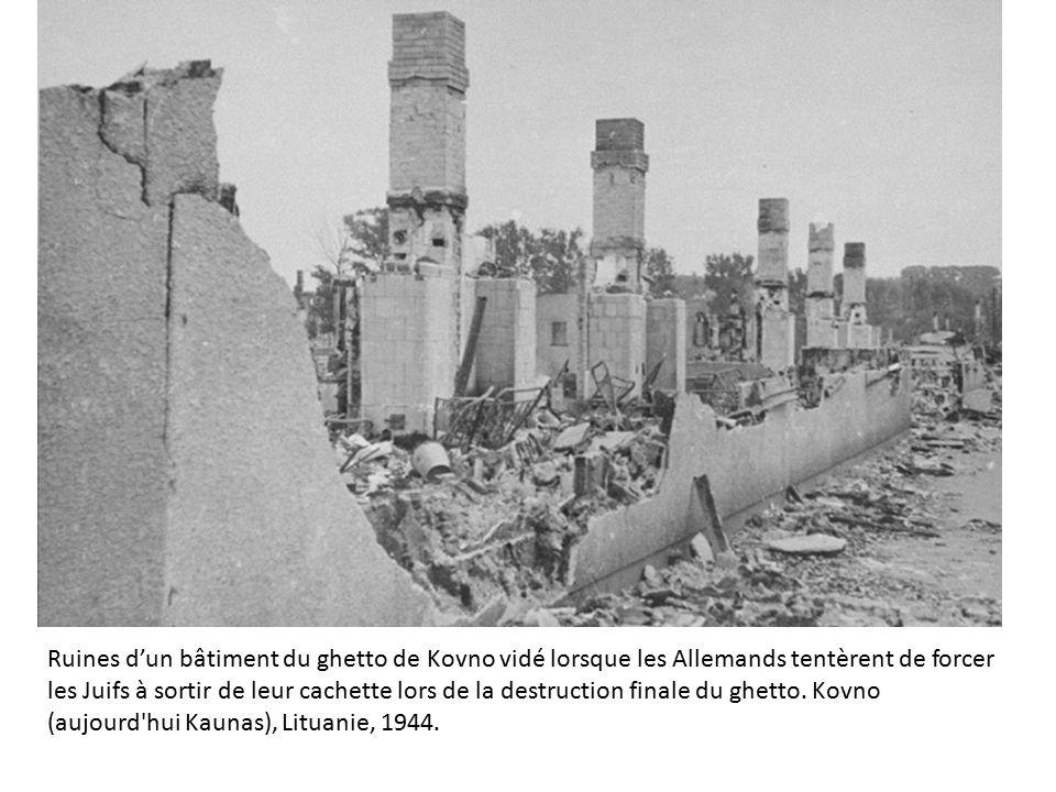 Enfant Juif De Varsovie