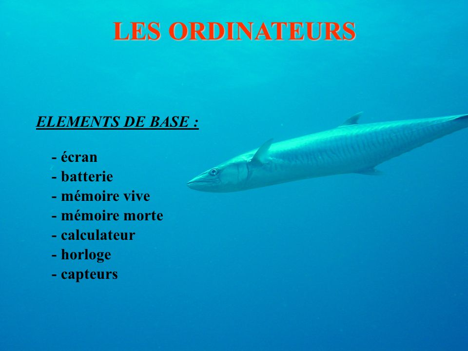 LES ORDINATEURS ELEMENTS DE BASE : - écran - batterie - mémoire vive - mémoire morte - calculateur - horloge - capteurs