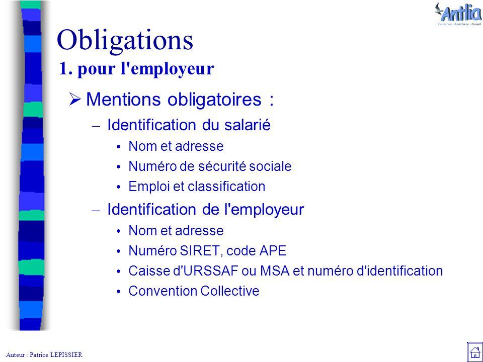 Auteur Patrice Lepissier Le Bulletin De Salaire Obligations