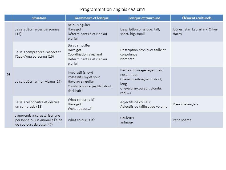 Bien connu Programmation anglais ce2-cm1 situationGrammaire et lexiqueLexique  AV03