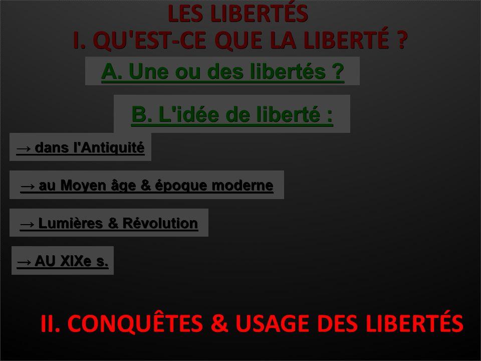 I Qu Est Ce Que La Liberte B L Idee De Liberte Dans L