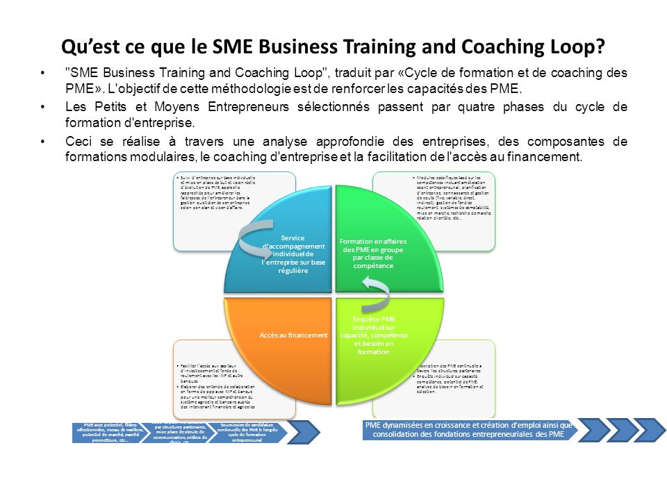 Qu'est ce que le SME Business Training and Coaching Loop.