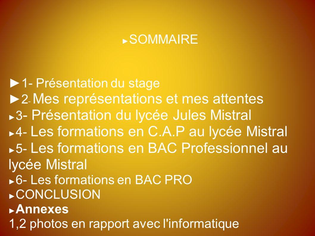 Diaporama De Stage En Lycée Professionnel Année Scolaire