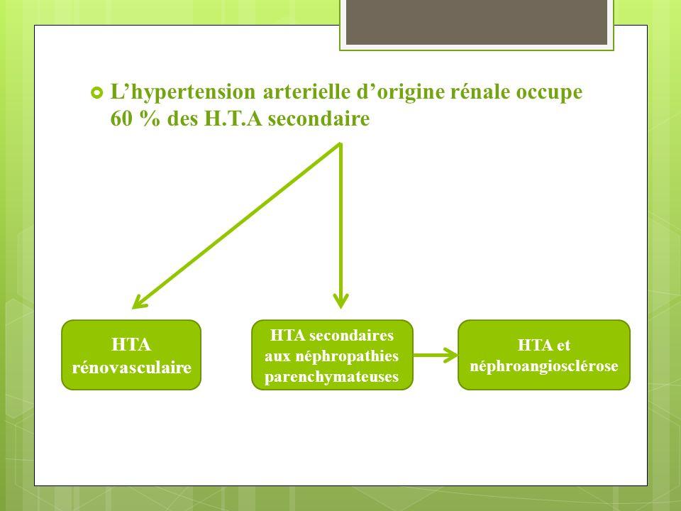 HTA D'ORIGINE RENALE Dr S Missoum.  L'hypertension arterielle d ...