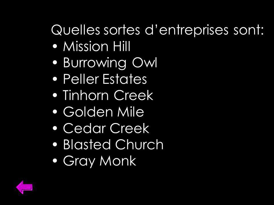Quelles sortes dentreprises sont: Mission Hill Burrowing Owl Peller Estates Tinhorn Creek Golden Mile Cedar Creek Blasted Church Gray Monk