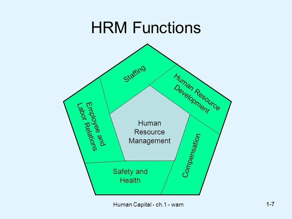 role of human resources function essay The role of a human resources manager as it pertains to recruitment will be discussed just before the conclusion it is widely accepted that recruitment is the only acceptable process of soliciting prospective employees in the world of work.