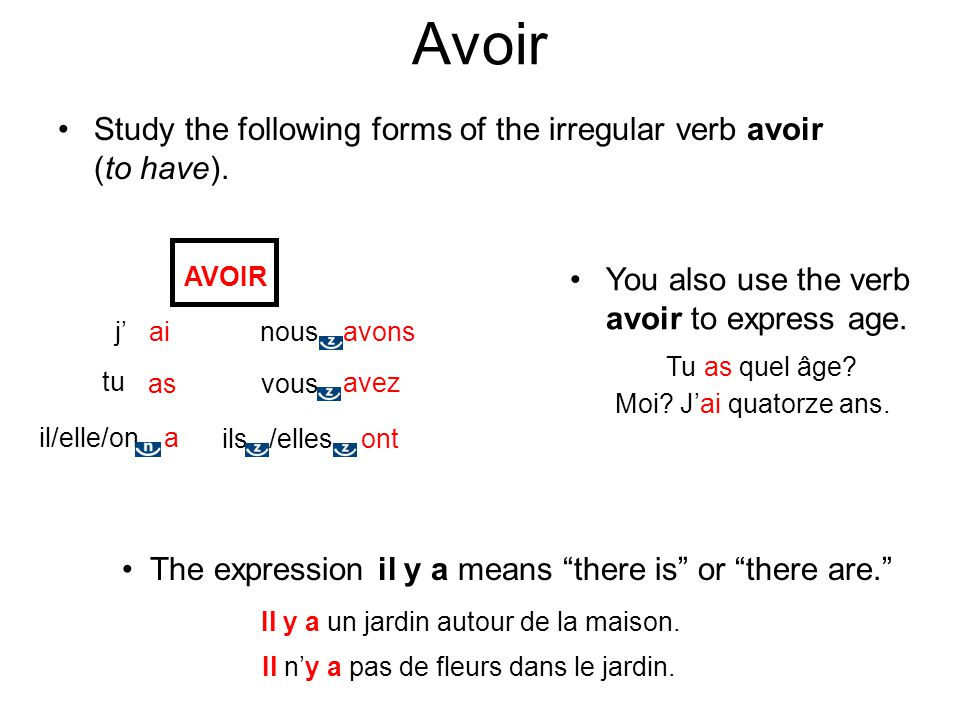 Avoir Study the following forms of the irregular verb avoir (to have).