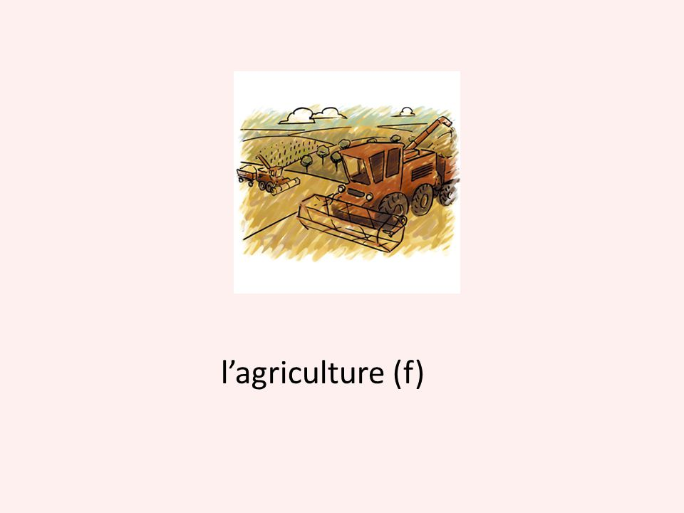 l'agriculture (f)